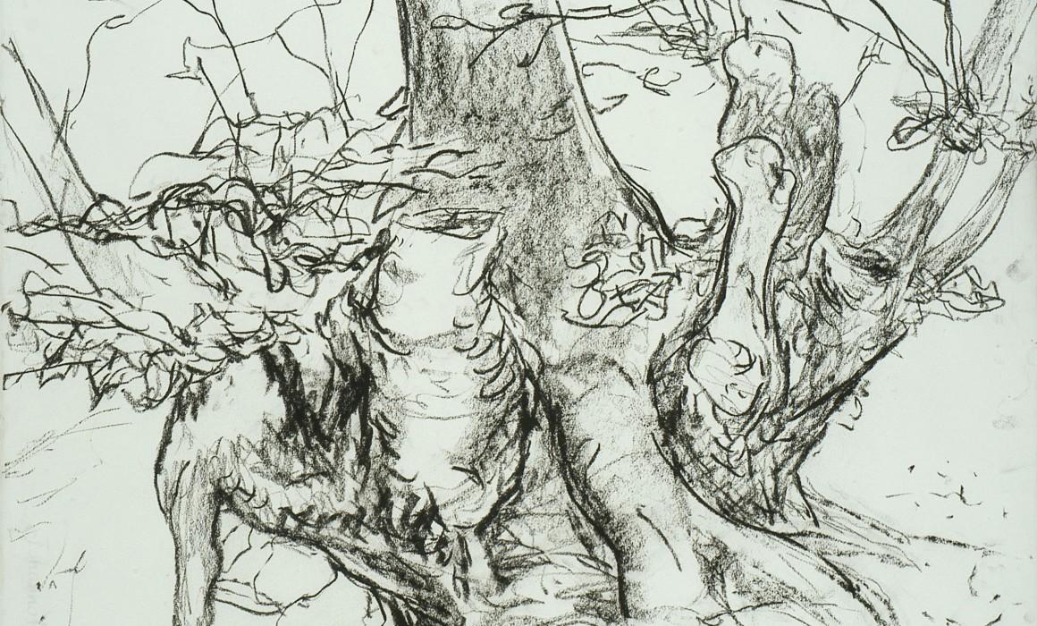 Jörg Langhans, les arbres,Henri Michaux,extrait